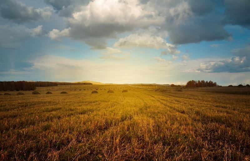 Quel Est Le Prix Moyen D Une Parcelle De Terre Agricole Bativox