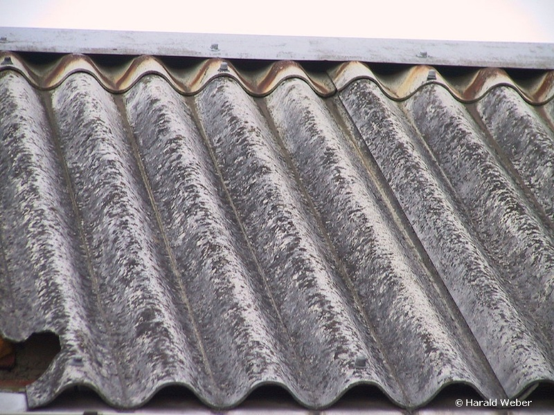 asbest op dak